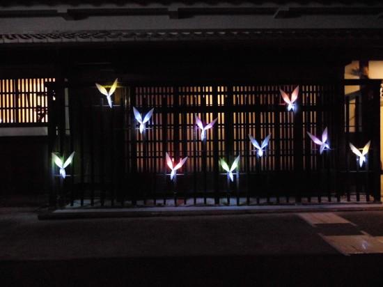 光の渡り鳥 CIMG4680