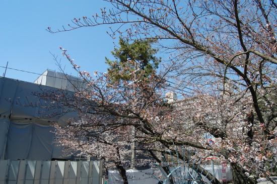 ツイッター3.夙川公民館前 DSC_4062