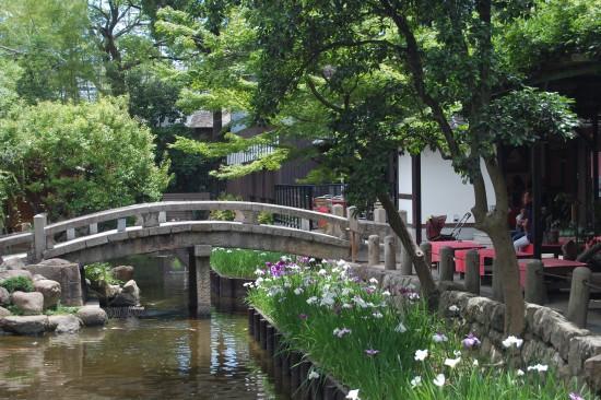 2.神池の橋 DSC_7892