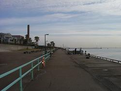 Sea Fishing Park