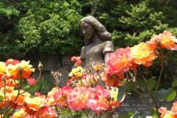 Anne's Rose Church