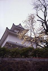 Kyogyoji Temple