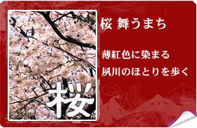 桜舞うまち
