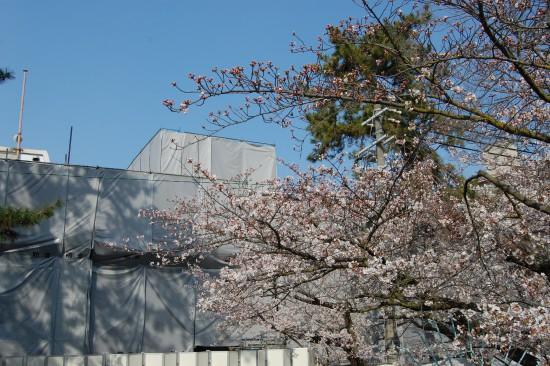 4.夙川公民館前 DSC_4124