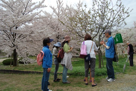 5.桜めぐりミニツアー(越水浄水場) DSC_5281