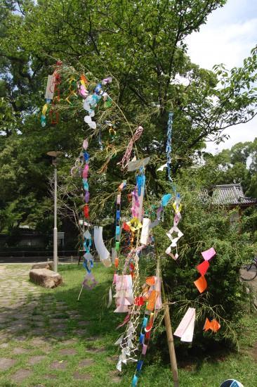 1.六湛寺公園の笹飾り DSC_9519