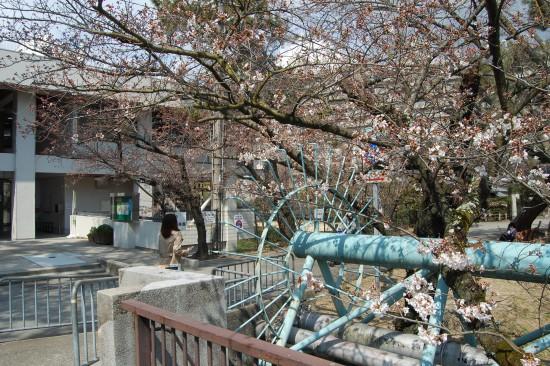 4.夙川公民館前 DSC_4216