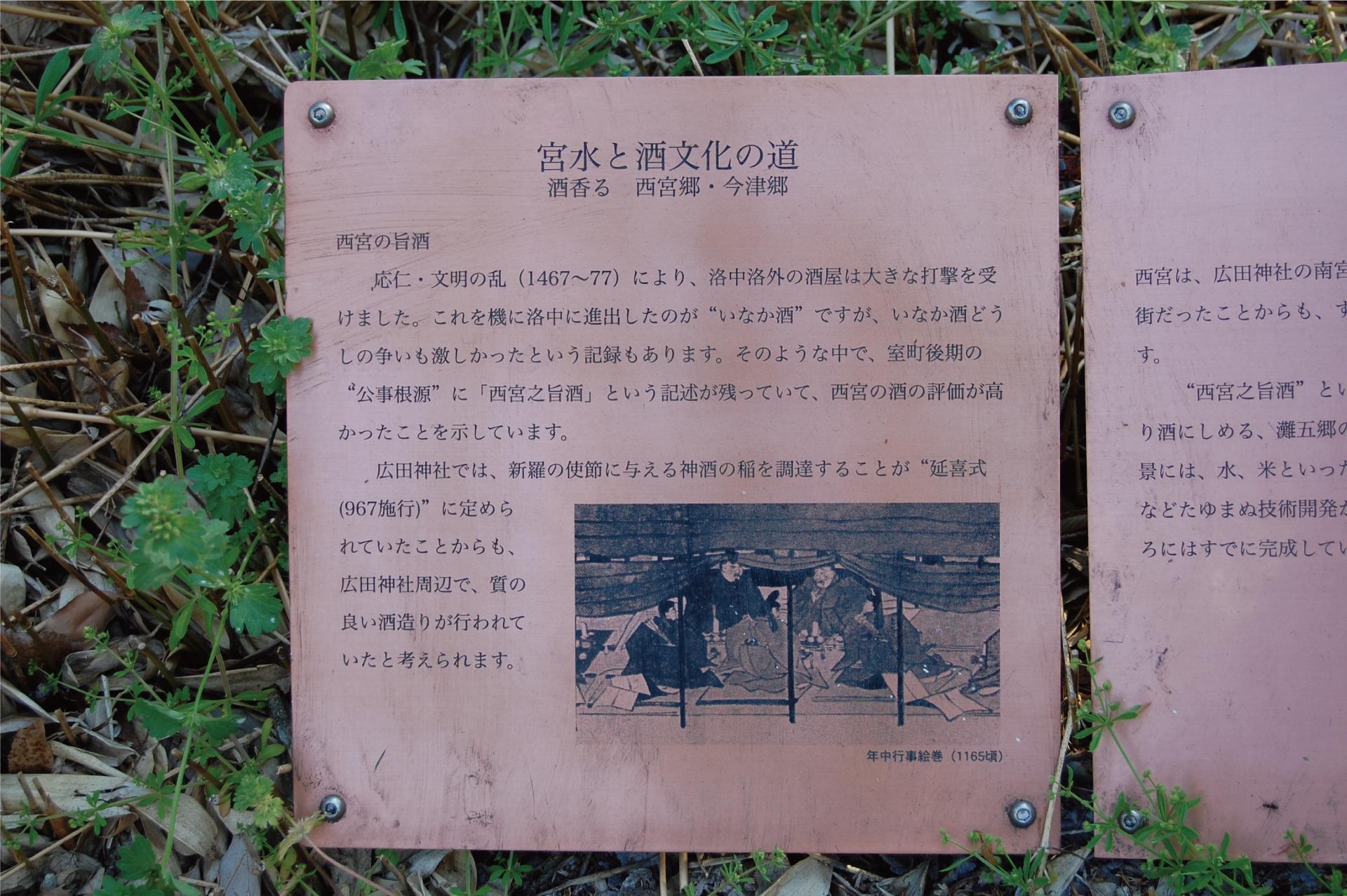 douban07_b